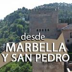 Visita Guiada Alhambra con Ingressi e Guida Turistica - Partenza da Marbella, San Pedro
