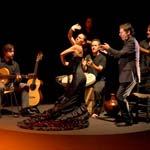 Alhambra Tour mit Eintrittskarten und lokaler Führung + Flamenco Show