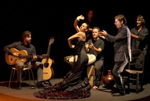 Alhambra Tour with Tickets and Expert Guide + Flamenco Show in Granada