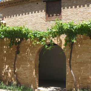 Visite guidée de l`Alhambra avec Billets d`entrée et Guide