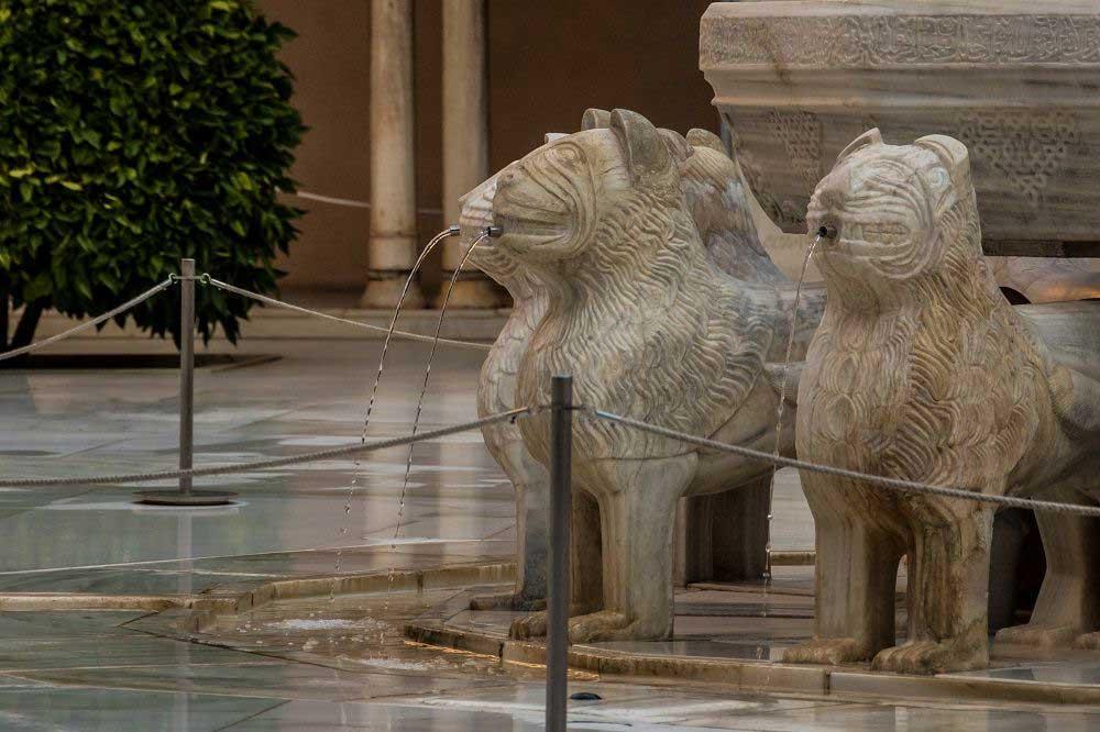 patio-leones-detalle-producto