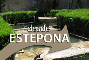 Alhambra Tour with Tickets and Expert Guide from Estepona