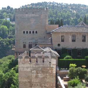 Visite Guidée de l`Alhambra avec Billets d` entrée et Guide; Sans Transport